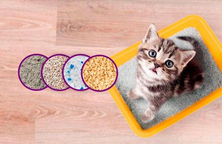 Imagen para la categoría Higiene Gato