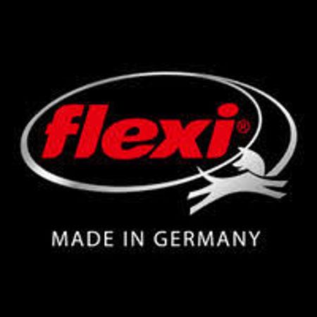 Imagen para la categoría Flexi