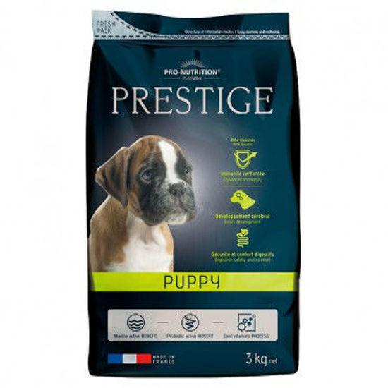 Imagen de Prestige Puppy