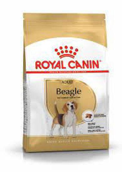 Imagen de Beagle Adult Royal Canin