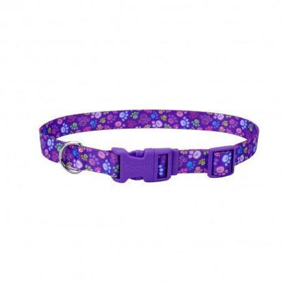 Imagen de Coastal Style Collar Special Paws